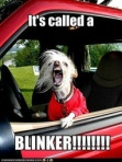 It's called a blinker
