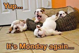 Monday II